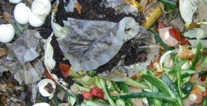 compostingredients