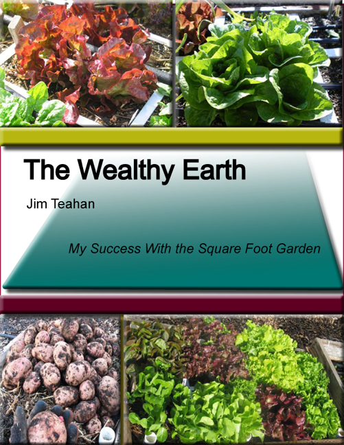 The Wealthy Earth by Jim Teahan