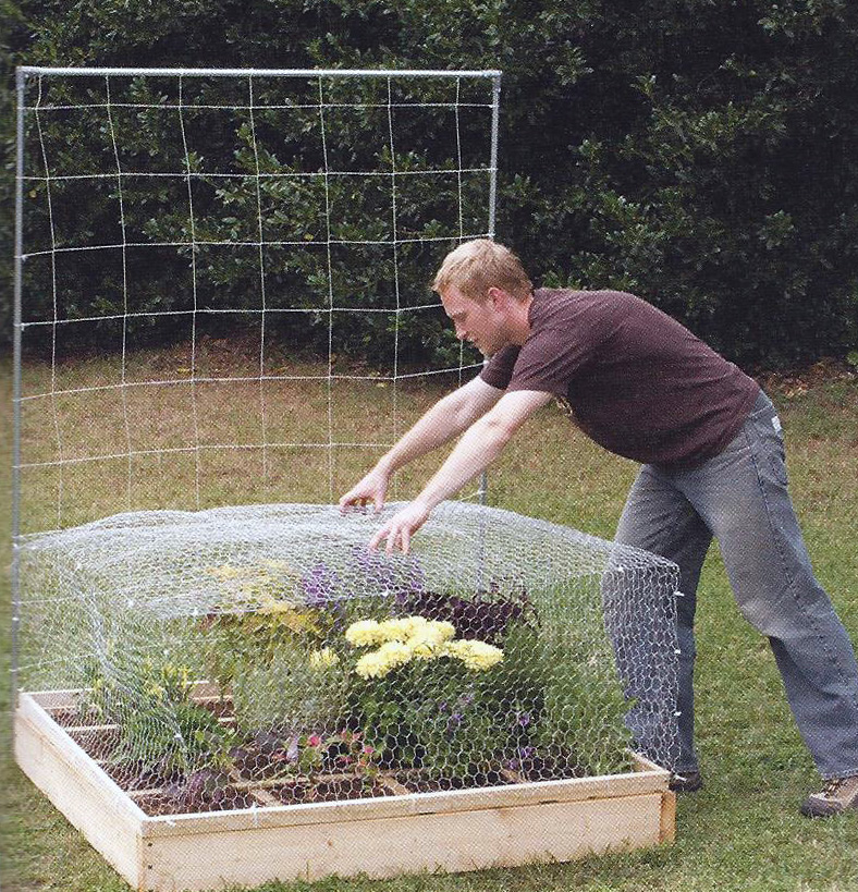 Delightful Chicken Wire Garden Cage