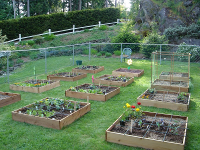 What is Square Foot Gardening Mel Bartholomew Creator of Square