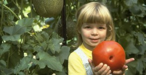 casey-with-tomato