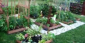 showcase-garden
